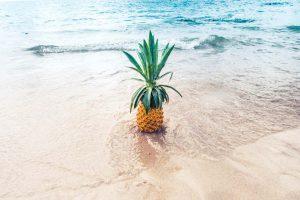 10 Vegan Summer Essentials!